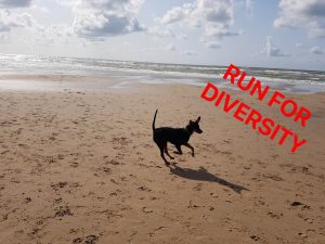 Run for diversitiy