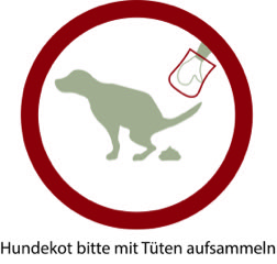 DOG Solution Trainingsregeln